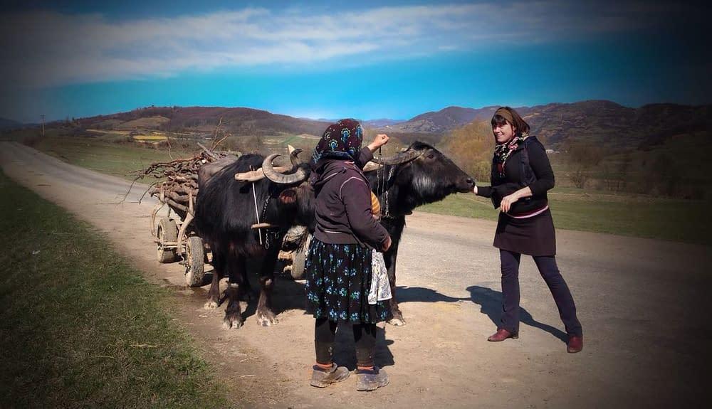 Kvinnor arbetar och sliter. Många är änkor och kämpar för dagen.
