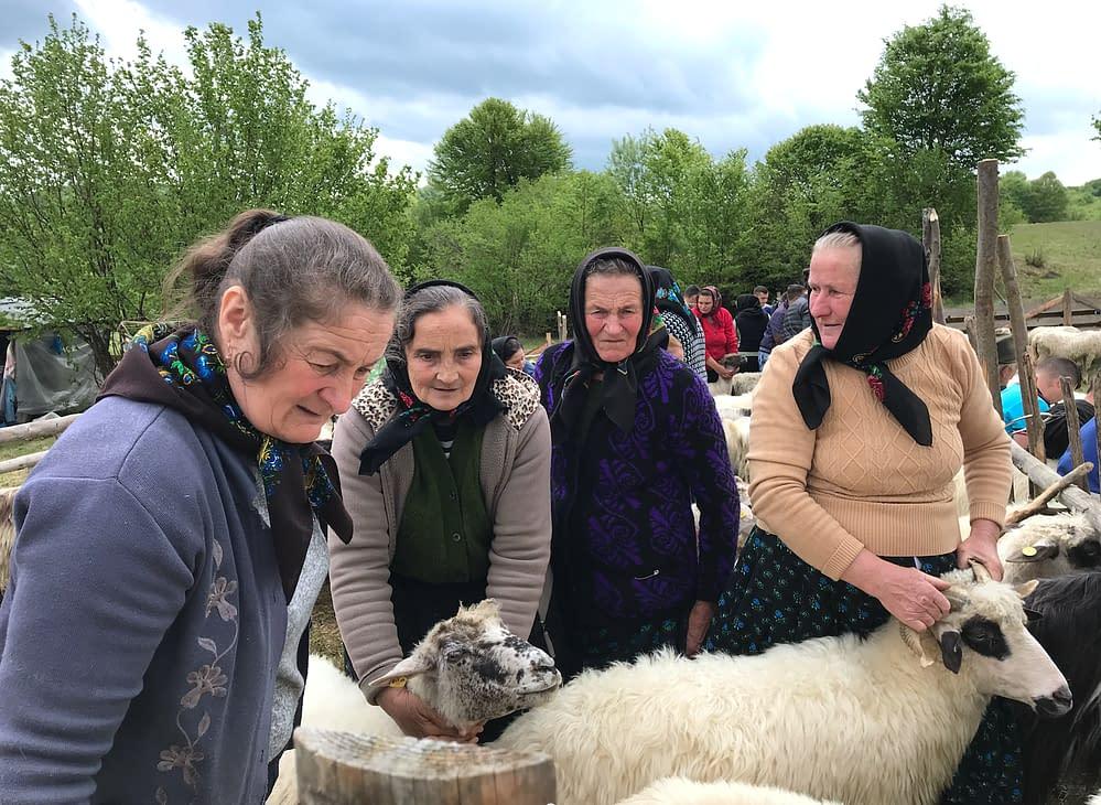 Eco farmers in Transylvania