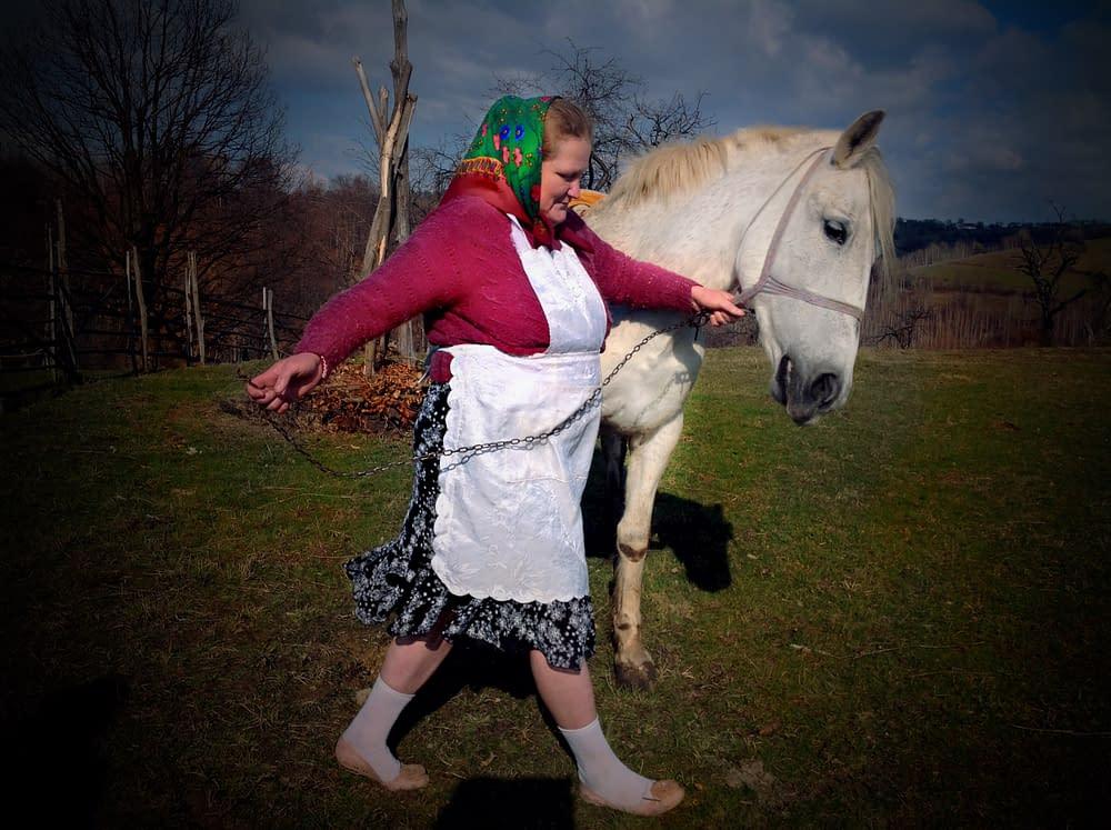 Horse and farmer