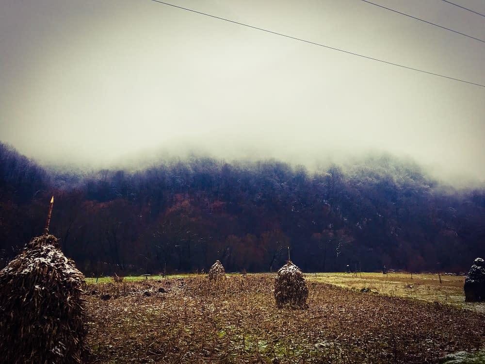 Dimma i Transsylvanien