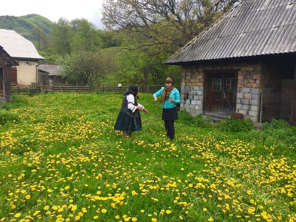 Malin och folksångerska på maskrosäng i Rumänien