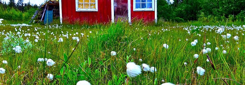 hemman i Lapplands världsarv