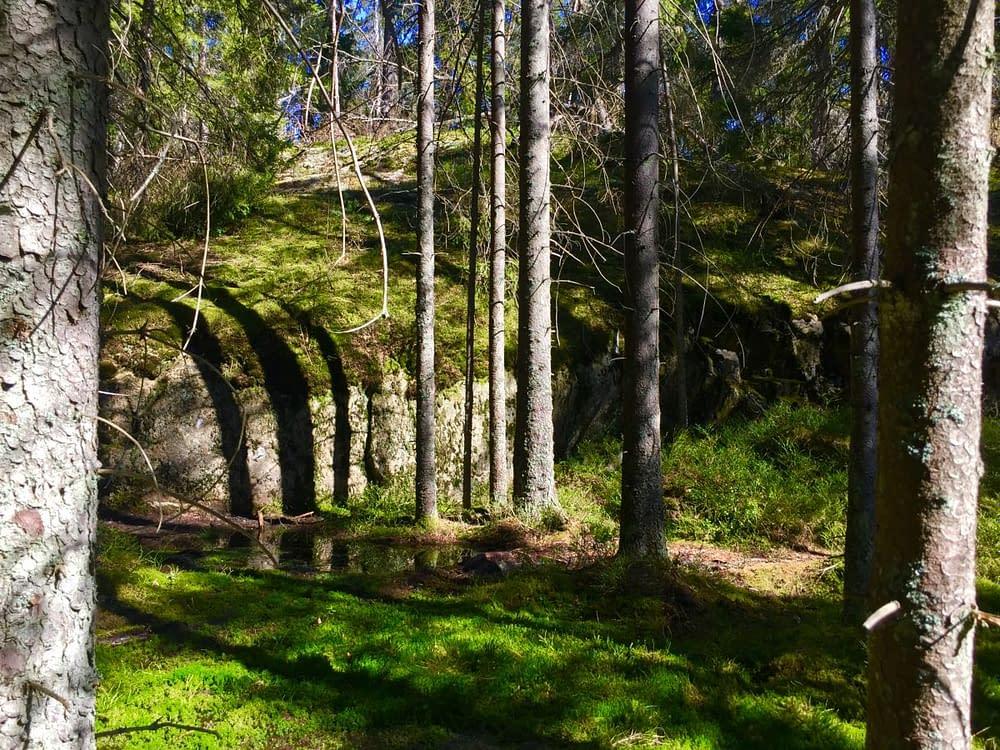 Mossen med träd o klippor
