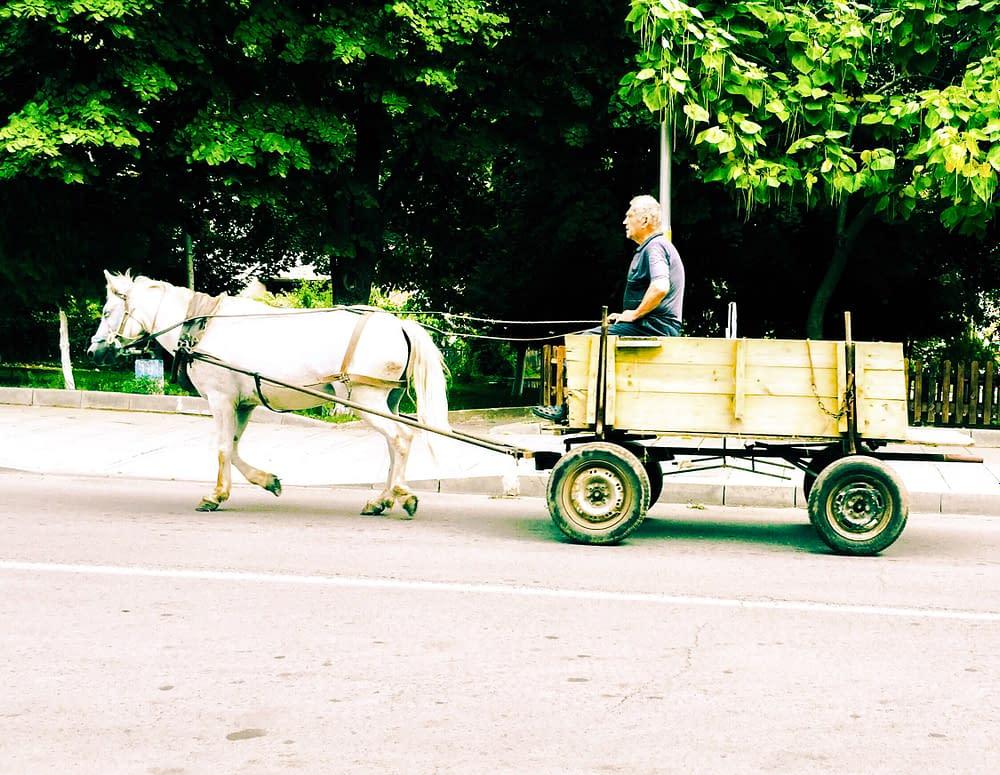 Häst och vagn i Bulgarien