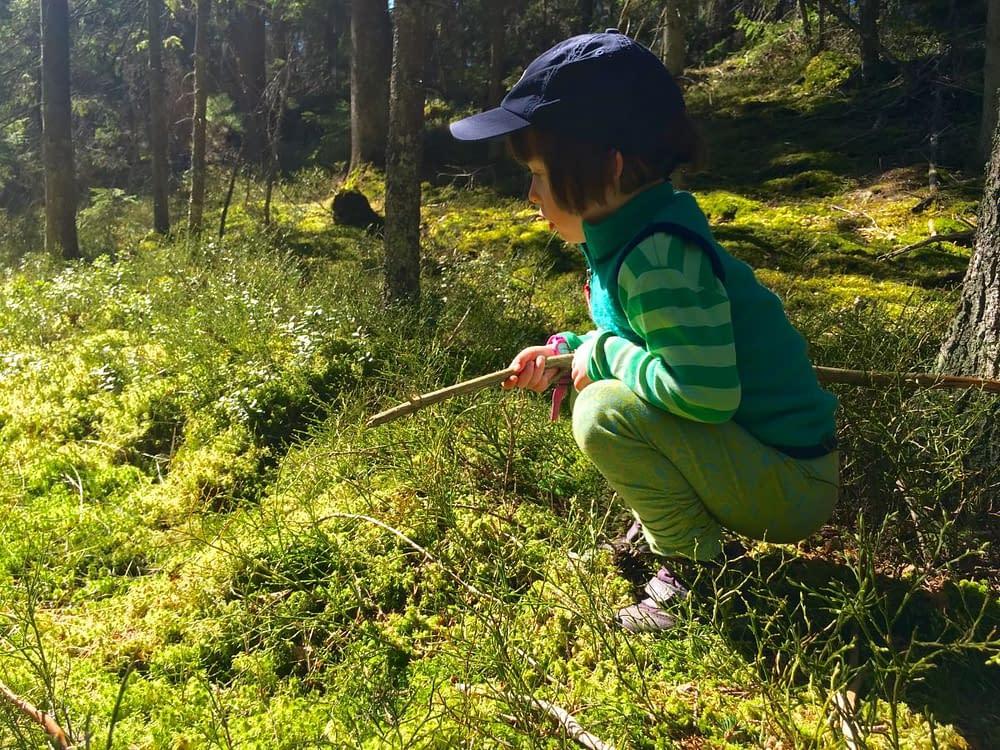 Urskogsspaning med barn.
