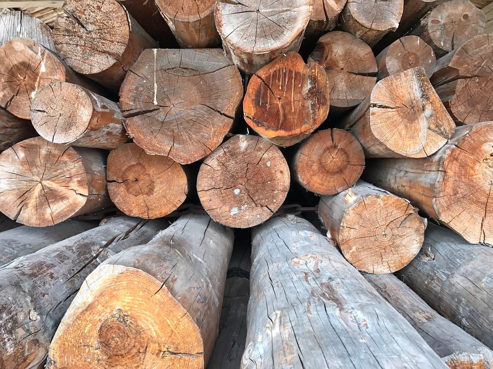 Wood, timber, Härjedalen, Sweden