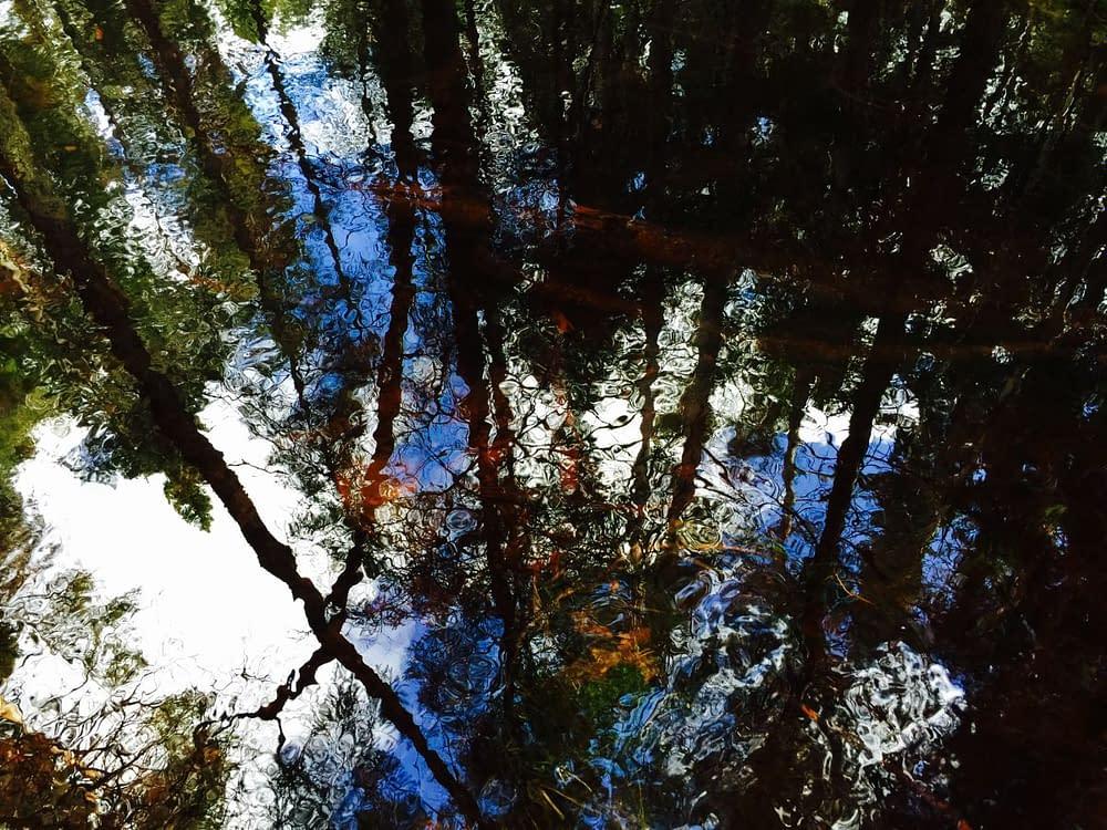 Spegelblankt vatten