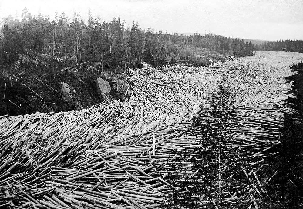Swedish timber - museum